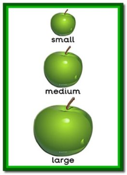 maths-sizes-s_m_l-apple-pi
