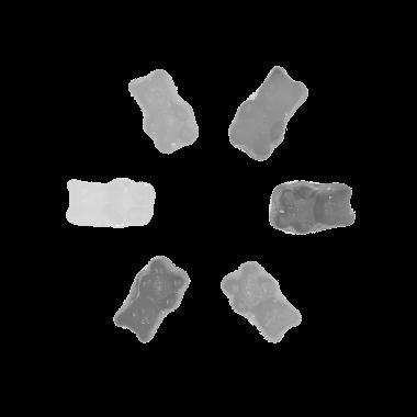 Citra Grayscale Hasil Segmentasi